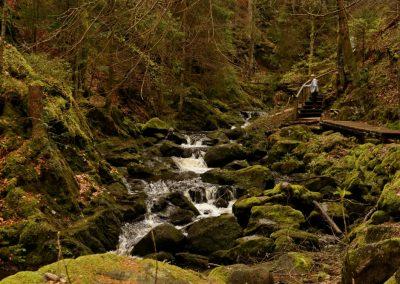 Am Falkauer Wasserfall