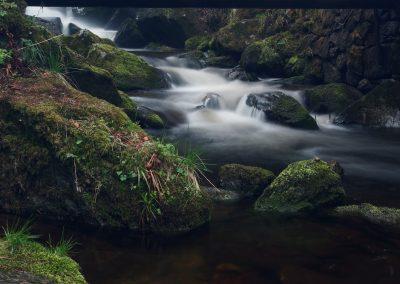 Am Menzenschwander Wasserfall 2017