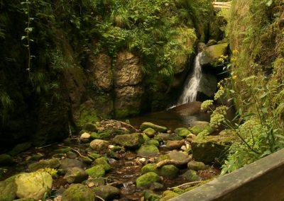 Am Menzenschwander Wasserfall