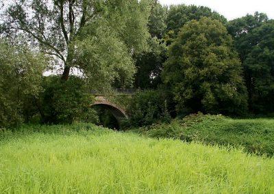 Wiese mit Brücke