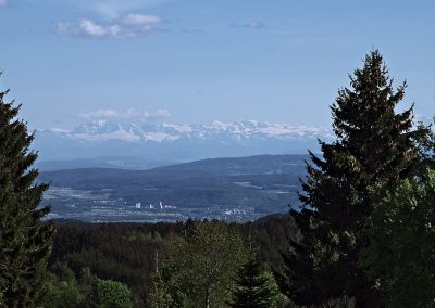 Schwarzwald Alpenblick