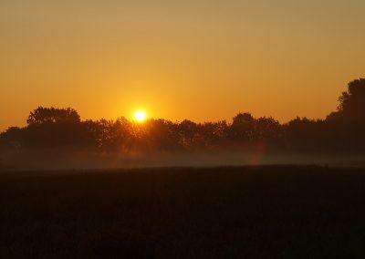 Sonne mit Nebel